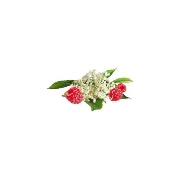WELLIBITES hyllebær & bringebær med sink, 70g